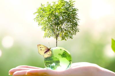Πανεπιστήμιο Frederick | Μεταπτυχιακό στην Εκπαίδευση για το Περιβάλλον & την Αειφόρο Ανάπτυξη Δια Ζώσης