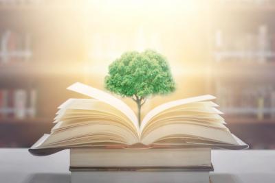 Πανεπιστήμιο Frederick | Μεταπτυχιακό στα Αναλυτικά Προγράμματα και Διδασκαλία